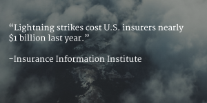 Lightning strikes cost US insurers nearly 1 billion last year.
